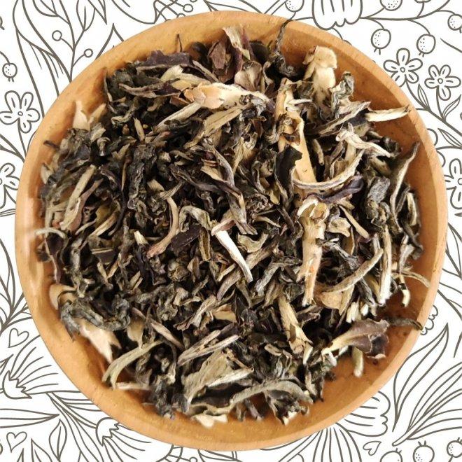 Grüner Drache (Grüner Tee)