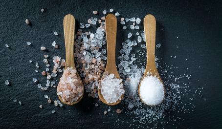 Salze kaufen